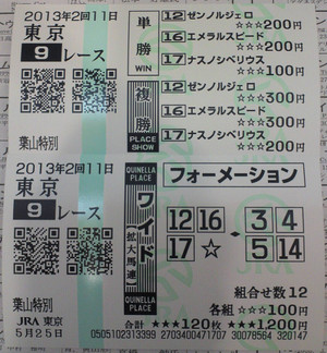 2013_hayama_tokubetsu