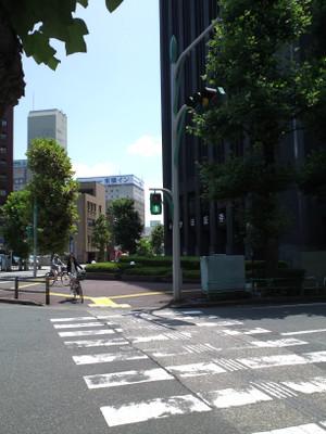 Fukui_shingo_green