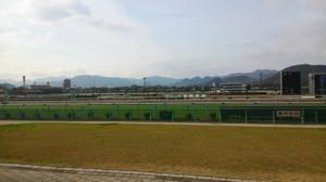 Kokura_racecourse_home_stretch__