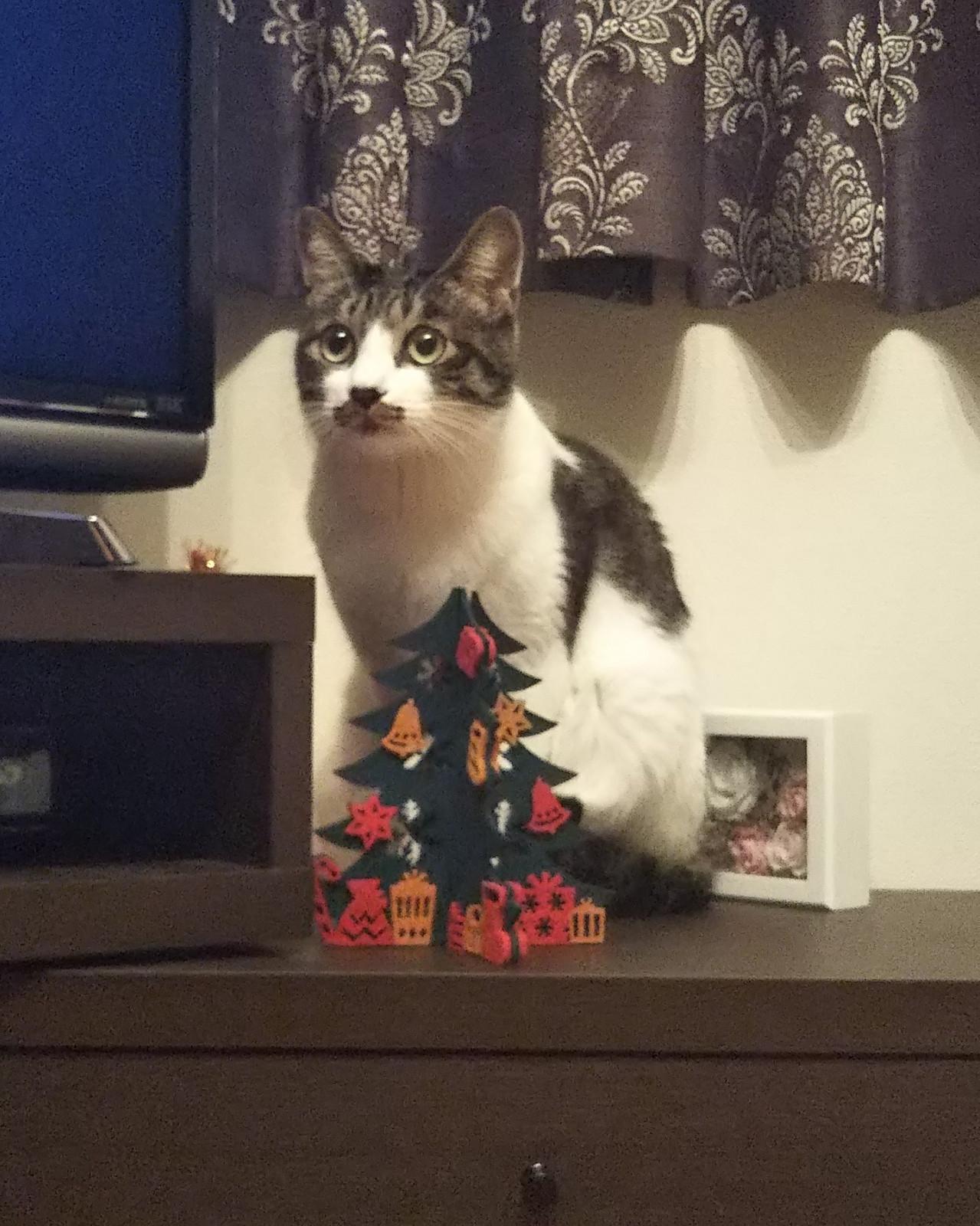 Roku_christmas_ver
