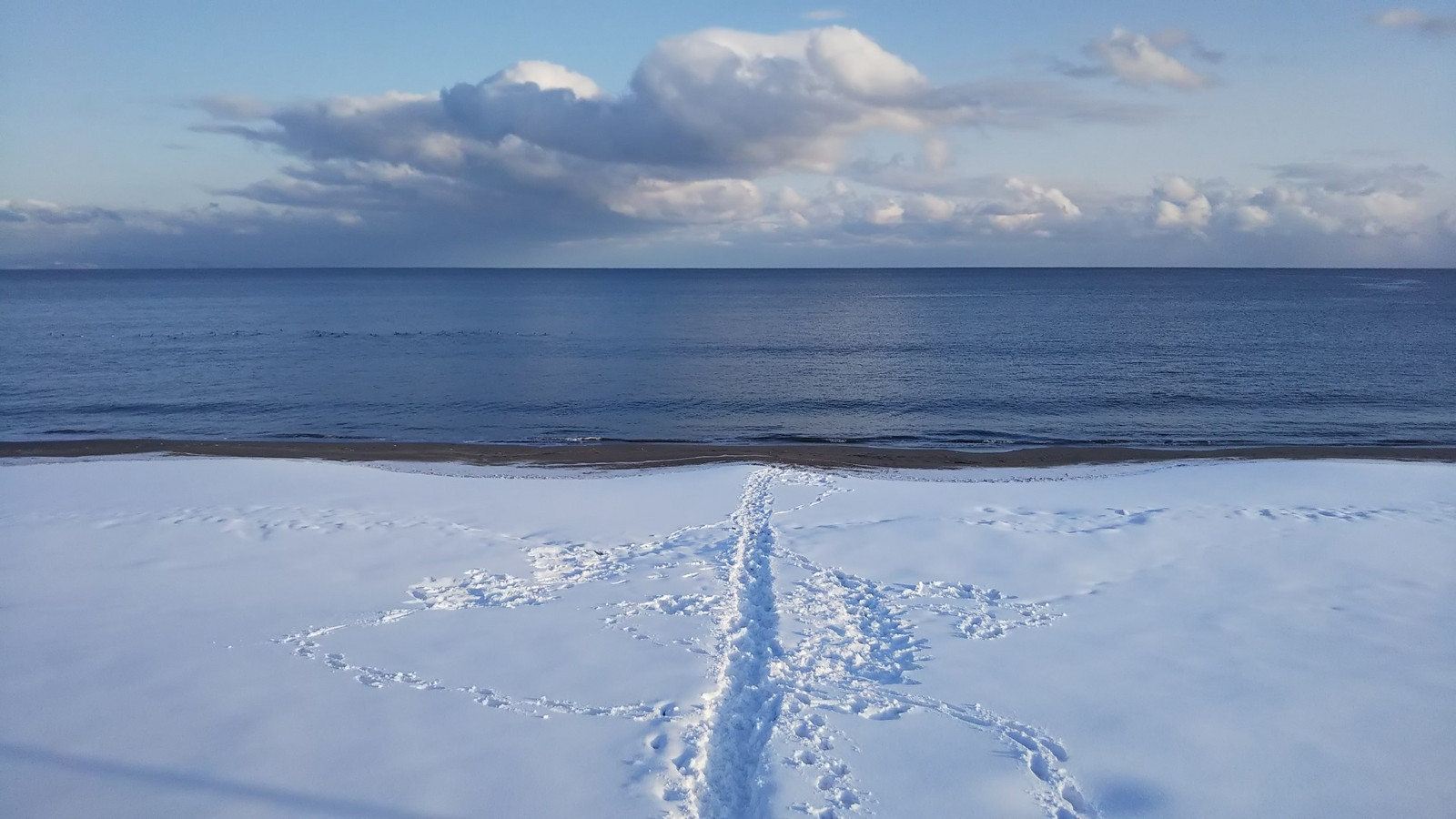 Oshamambe_snowed_coast1