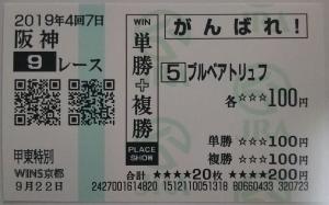 2019-koto-tokubetsu