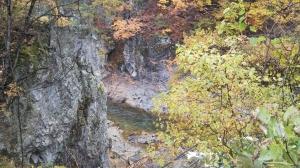 Aga-river-koyo