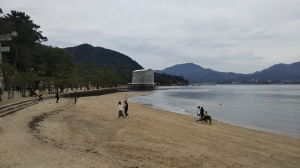 Itsukushima-shrine-repairing